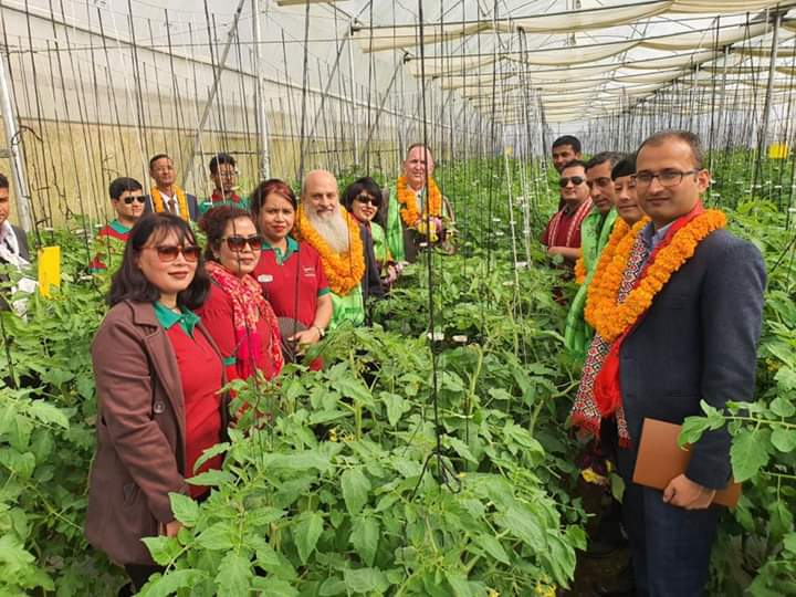 Green House Farming of Arava Nepal' first field Lamjung